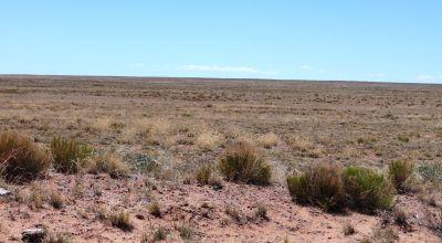 Large 2.5 acre Arizona parcel near Petrified Forest