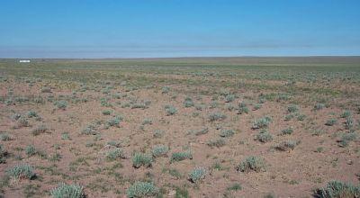 Sunny Arizona land near Petrified Forest and Painted Desert