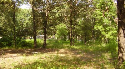 East Texas 2 adjoining lots   Near the shores of lake Palestine