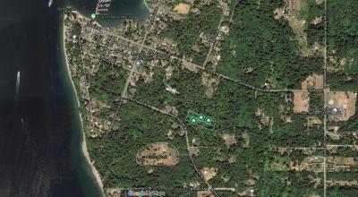 4 Forested Lots Near Olympia, Washington
