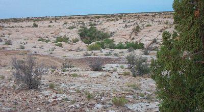 Chevlon Canyon Arizona Land