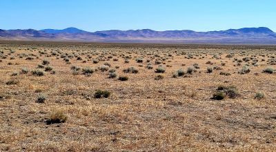 320 acres   surrounded by BLM Gov't lands *  east of 7 troughs Mountain