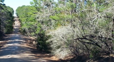 Bastrop Texas. 2 adjoining lots. Small Creek.  1/2 acre . OWF
