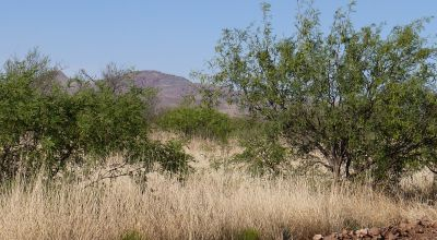 Scenic Southern Arizona 2 adjoining parcels