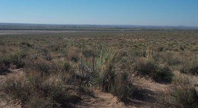 Escape Corona Camp * RV * Build in the Arizona desert