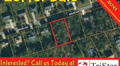 .46 acre Lot - Maiden NC -  Assessed at $20,000 - Buy for $10,999! No HOA, Tiny Homes Allowed