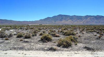Pyramid Lake Ranches - NW of Reno - 10+ Acres