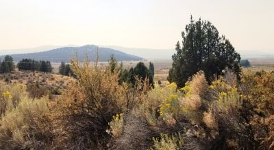 Huge Views of the Sprague River Valley