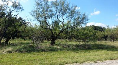 Pristine Quiet Texas Hill Country gated community   Deer & wildlife abound
