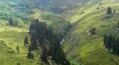 San Juan Mountains Patented Mining Claim * near Historic Animas Forks