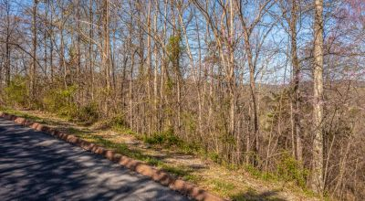 3/4 Acre Building Lot in Shiloh Springs