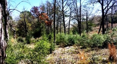 1/2 acre 2 adjoining lots Bastrop Texas. * 30 miles east of Austin *