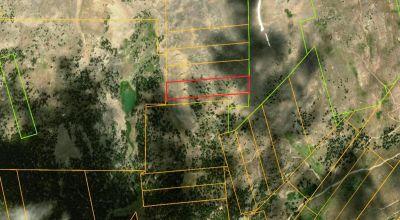 Historic Leadville Colorado area * Little Maggie patented mining claim