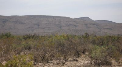 West Texas Desert  * Low Price *