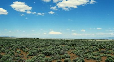 40 acres with good road access * expansive high desert views