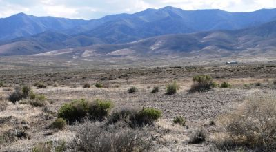 40 acres in Buena Vista Valley * Unionville * No restricitons * Camp RV