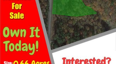 Unrestricted Wooded Lot Just Steps Away from Lake Sinclair with Direct Access! No HOA