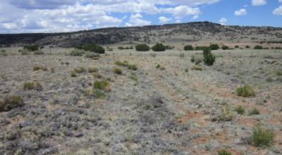 1.04-acre Awesome Lot For Sale in Apache County, AZ - Best Of Both Worlds Awaits!