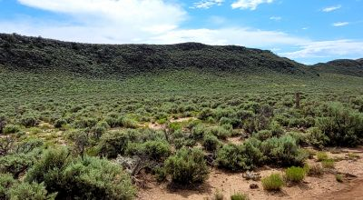 5 acres in the San Luis Valley . Mobiles and Modulars allowed