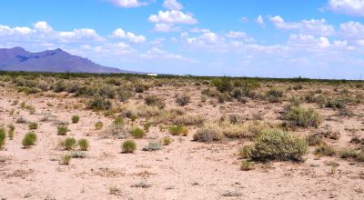4 adjoining lots. 2 full acres of Sunny Southern New Mexico