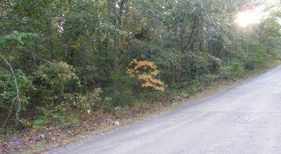 Cherokee Village Arkansas * Residential Lot * Trees * Utilities at street