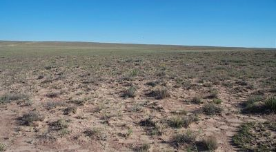 1.33 acres near Petrified Forest and Painted Desert