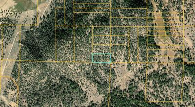 5 acres Base of mountain * Borders Fremont National Forest Service Lands