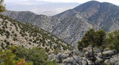 121 acres in the Mountains near Lucky Boy Pass