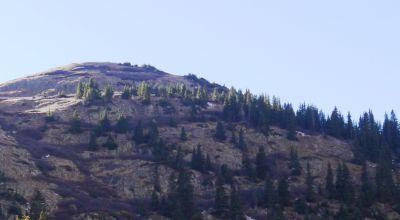 Top of Treasure Mountain * Silverton * Ouray * Animas Forks Colorado