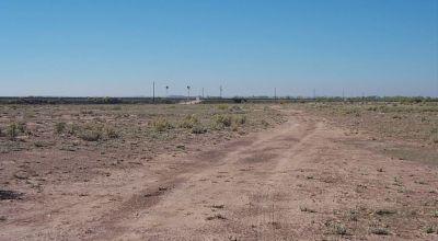 Sunny Arizona Holbrook - Petrified Forest area