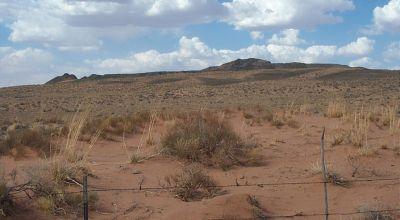 Wide open Views *   BLM lands across road * Petrified Forest Painted Desert Arizona land
