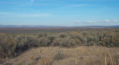 40 acres in  Presidio County  * Classic West Texas Desert