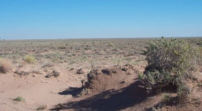 Small dry gully on property near Petrified Forest and Painted desert