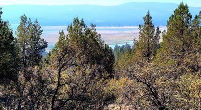 Sprague River Valley Views * Trees * Mobiles, modulars, site-builds ok