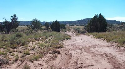 Corner lot   remote part of Ranch of the Golden Horse   near Snowflake Arizona