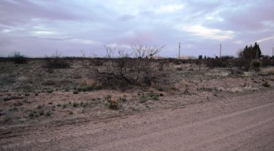 Sunny Southern New Mexico 2 full Acres with power at property line.   4 adjoining lots