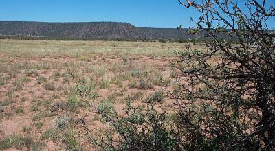 Ranch of the Golden Horse  Snowflake Arizona   Mobiles, Modulars, Site builds ok