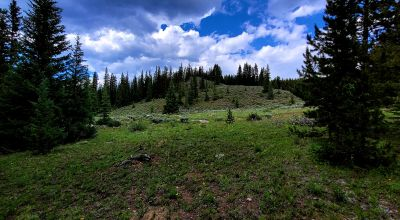 Gorgeous High Mountain Property with trees  near Leadville Colorado.