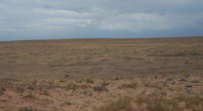 3 adjoining lots  * Sunny Arizona * Hobrook * Petrified Forest area