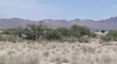 6 adjoining lots in Historic Cochise County Arizona