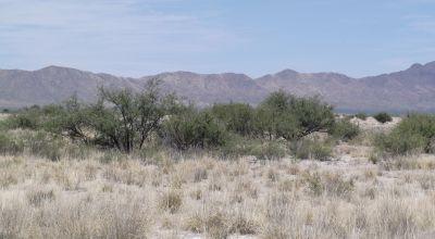 6 adjoining lots in Historic Cochise County Arizona