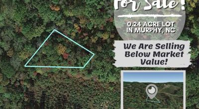 $15K Lot Owner Financed Only $9,799 Surrounded by National Forest and HIwassee Lake Near Chattanooga