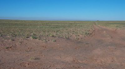 Westerly Views * Petrified Forest Painted Desert area * Mobiles, modulars, site builds,Camp RV