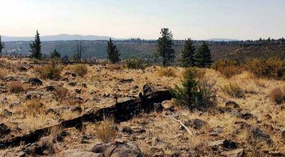 2 adjoining lots Oregon Pines on Mesa - Near Rim