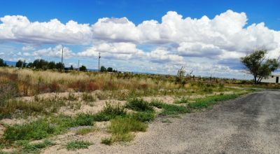 Town Lot in Willard, New Mexico - Water and Power Available