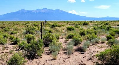Remote & Quiet * Dead end Road * adjoining Alamosa County line
