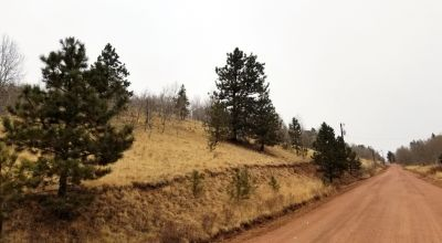 Cripple Creek Mountain Estates * Scenic Views * Residential parcel