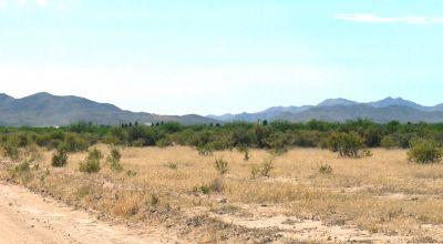 Historic Cochise County * Classic Arizona Desert