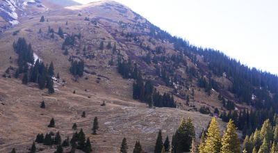 Treasure Mountain patented mining claim above historic Animas Forks * Own the land and minerals