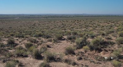 3 adjoining lots near Petrified Forest Arizona land